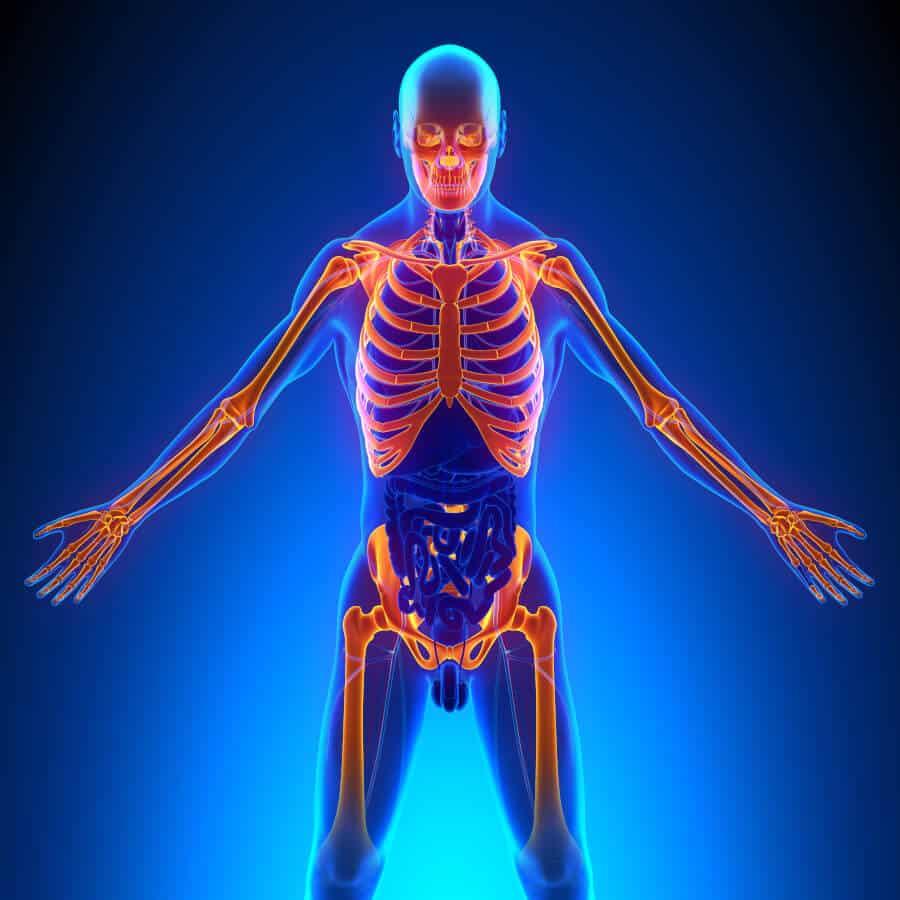Fibromyalgia   st ives chiropractor   chiropractor   epstein chiropractors